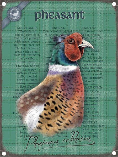 Schild Pheasant – Fasan