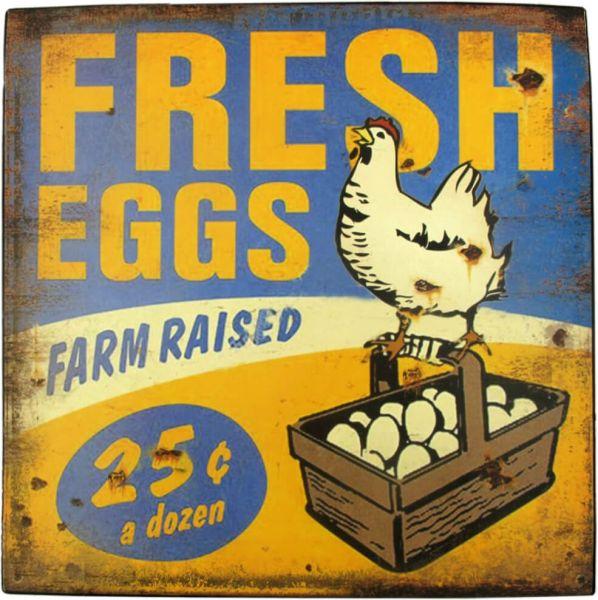 Blechschild Fresh Eggs Chicken