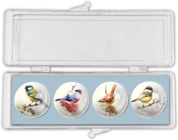 Glas-Magnete Garden Birds – Gartenvögel