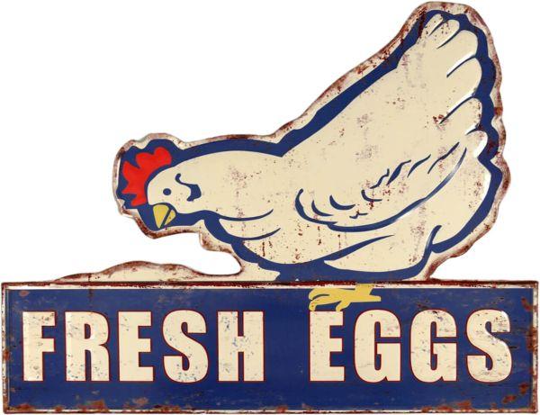 Blechschild Fresh Eggs XXL