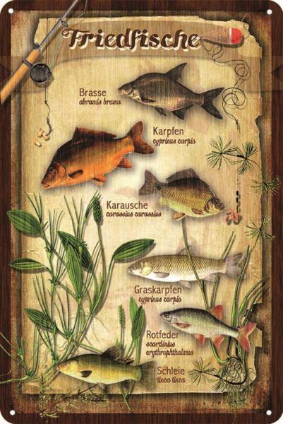 Schild Friedfische