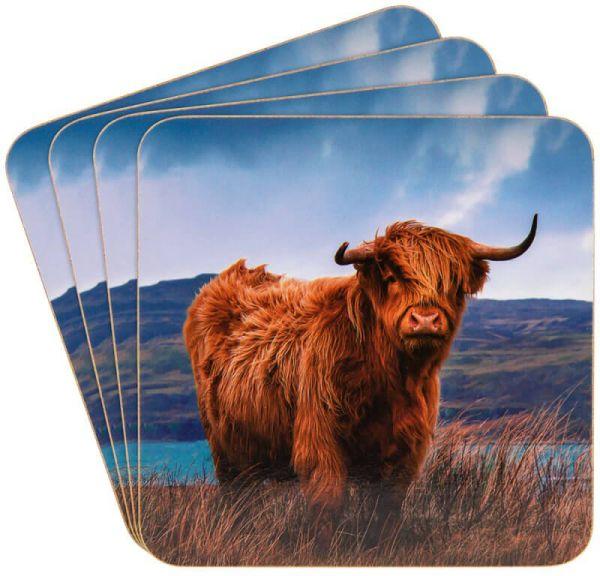 Untersetzer Highland Cow, 4er-Set