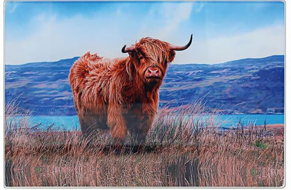 Arbeitsflächenschutz und Schneidebrett Highland Cow, Glas