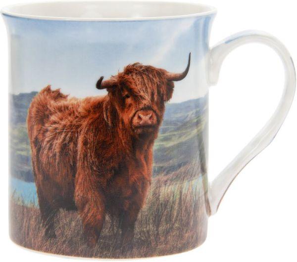 Becher Highland Cow