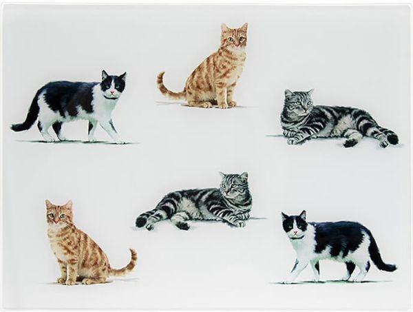 Arbeitsflächenschutz und Schneidebrett Katzen, Glas