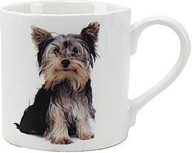 Becher Yorkshire Terrier, sitzend